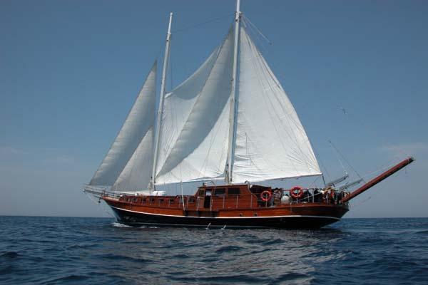 Gemi Tasdiknamesi