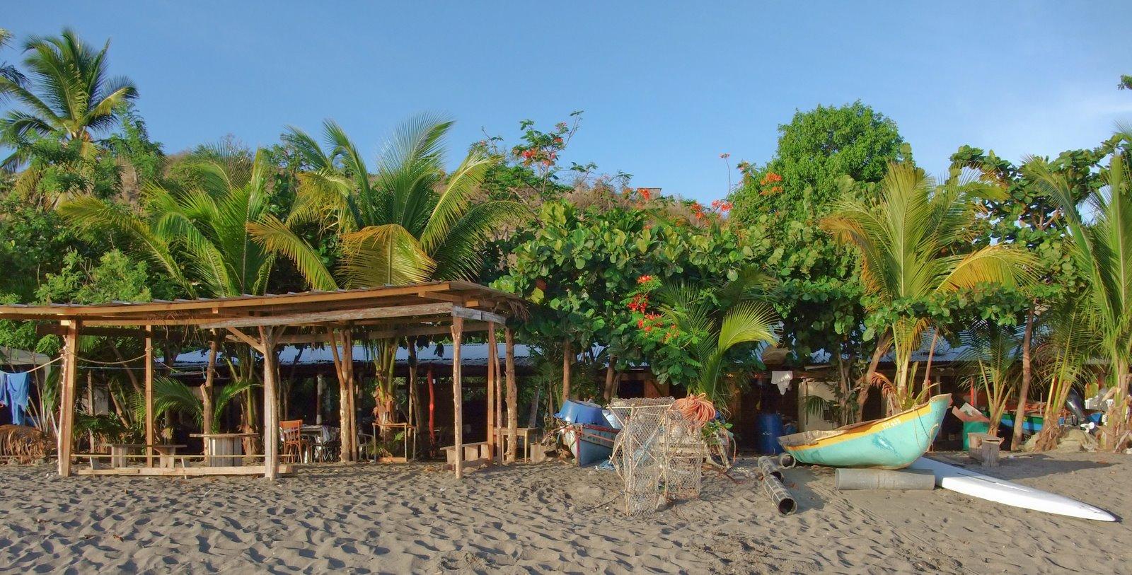 Les acivités en Martinique