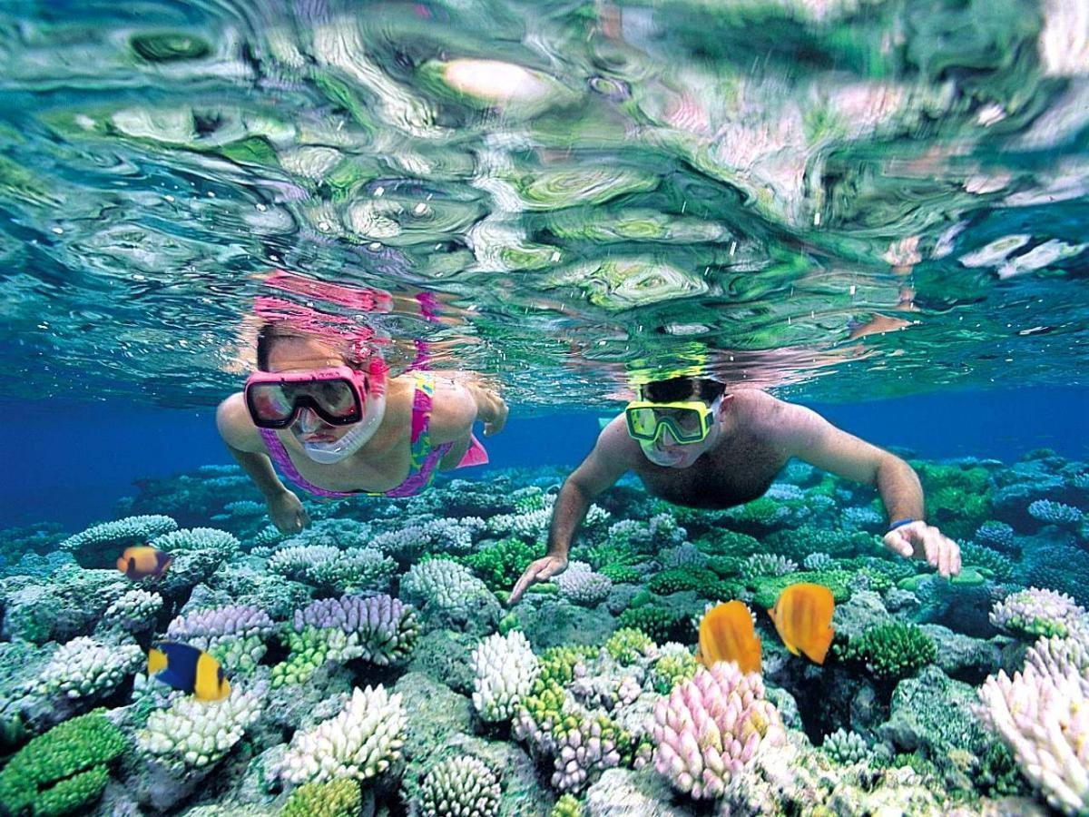Profiter d'une agréable croisière plongée aux Maldives